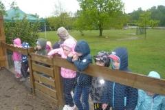 Przedszkole na farmie